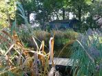 Raucherhaus am Teich