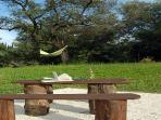 Olive grove has seating area & hammock, wonderful views over the verdant valley.