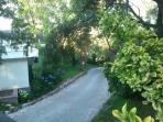 Calle del barrio