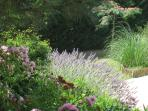 Bazac Garden