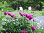 The flower beds give our property a regal feel!