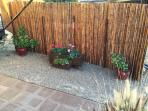Bamboo fence provides plenty of privacy
