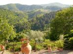 Panoramablick auf die Chiantiberge - panoramic few at the Chianti Hills