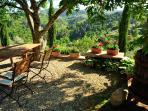Relax unter dem Baum vielleicht mit einem Glas Wein - relax under the tree with a glass of wine?