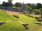 June Blake's Garden
