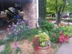 one garden view