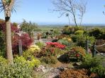 Front garden is full of interesting plants and birds with views across to the sea