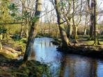 The Ober Water Trail - lovely woodland walking nearby