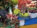 Take a trip into Malaga and wander round the fresh food market can you name all this produce