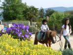 Pony ride with Galopin in our hamlet
