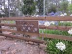 Dragonfly Cottage @ Tamar Valley, Tasmania