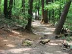 Access the Kennesaw Mt. nature trails 1 block away.
