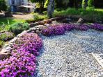 garden plantings are local drought resistant planting