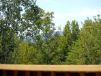 View from main level deck-Summer view