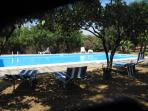 swimming pool under orange trees, fully furnished apartment in a peaceful mediterranean garden