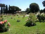 Roses' garden-10 minutes away from home-Aventino Hill