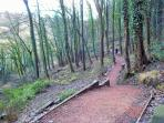 One of the lovely walks in Ironbridge - Right on the door step of Ironbridge View Townhouse