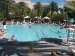 MGM Grand's huge pool with free access for our guests