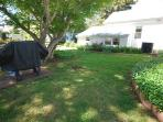 YARD - 212A Laurel St