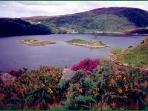 Lough Hyne inland sea lake. Ten minutes drive from Skibbereen. Irelands first Nature Reserve 1981.