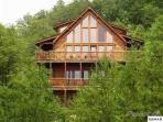 The cabin is surrounded in a wooded paradise!