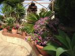 Giardino di VillaGaffe