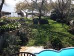 Backyard on the Sound