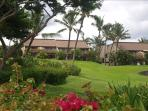 View of Maui Kamaole condos from Kamaole III Beach - Lush, tropical plants throughout property
