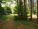 wood path behind house, hammock