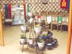 Les plantes et les légumes Anja camp de yourte