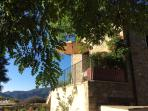 #Azalea: terrace