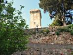 View of Brunelleschi's tower from the upper terrace garden