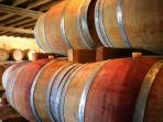 throughout the region, discover unique local wines