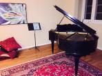 100 yr-old Baby Grande piano