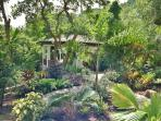Stone paths and tropical gardens leading to Palm Cottage