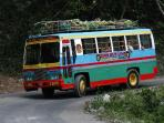 Chukka Bob Marley Tour Bus, leaves from Farm, 4 min away. Walk over.