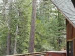 Back deck with spa and amazing views, listen to the seasonal creek