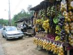 Fruit stand on Main Highway