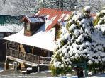 Mudpuppies and Moonshine Cabin - Winter 2015/2016
