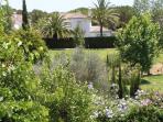 Benamara's communal landscaped gardens