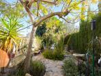 Spanish Garden.