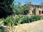 Flower-filled borders in the villa's garden