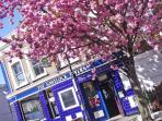 The famous gastro pub The Havelock Tavern is easy walking distance