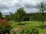 Babingtons Cottage.  The Orchard facing towards the Lammermuir Hills.