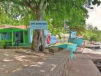 Having two dive shops on Bequia gives an excellent choice for snorkelling and diving