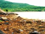 Views over West Loch Tarbert