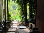 kitchen door leads through palm grove to herb garden