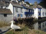 Pretty Polperro, a must visit!