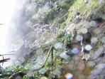 Beautiful walks through the rainforest under waterfalls