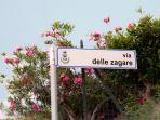 Strada principale, Angolo via delle Zagare